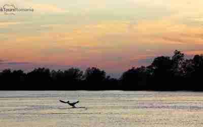 Danube delta sunset