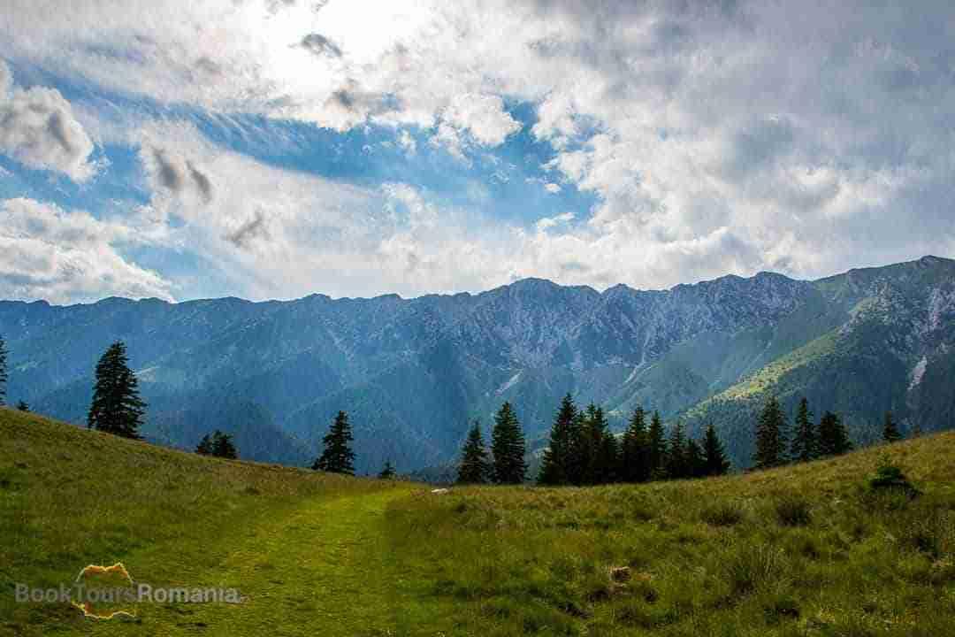Easy hike in Piatra Craiului Natural Park
