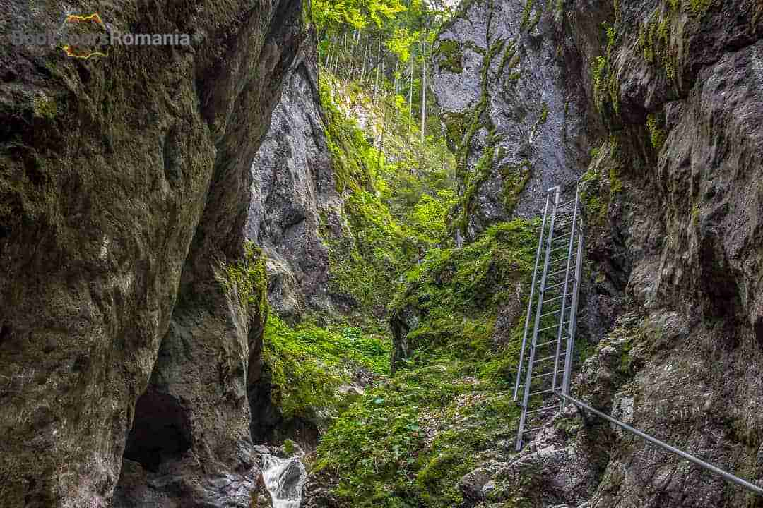 Day 1 - Bucharest to Peles Castle and Seven Ladders Canyon