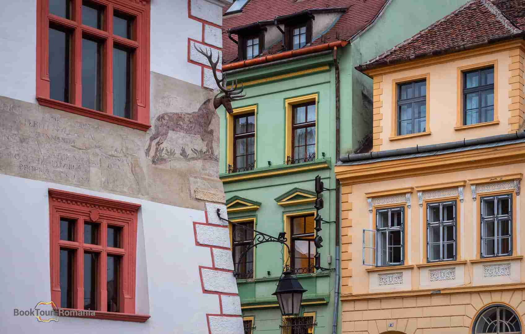 Stag House in Sighisoara